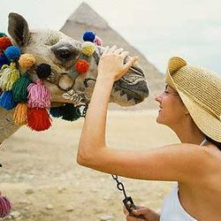 Love Egypt