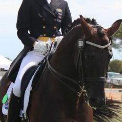 Elite dressage rider Heather Currie & Equistyle Quality Stocks