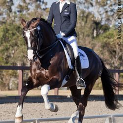 Elite dressage rider Heather Currie, International Baroque Horse Magazine & Equistyle Quality Stocks