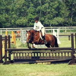 Rick Smith Memorial. July 2012 ~ Grand Champion