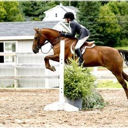 Knowlton Ridge Equestrian Center.  August 2012