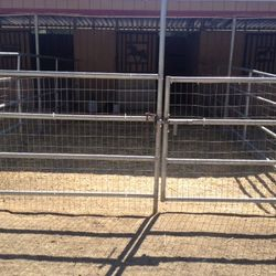 Gate leading into the chicken pen.
