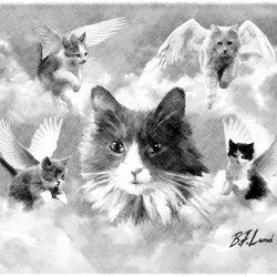 Feline Angels