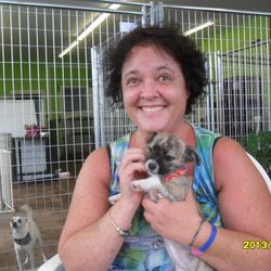 Happy Trails Laura! Adopted August 2013