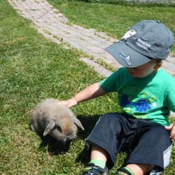 petting Endora