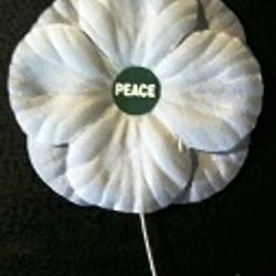 After the World War I British war widows, devastated by the loss of their husbands and family members, started the White Poppy campaign for peace. They wanted society to work actively to prevent war. This symbol of working for peace was adopted by the UK Women's Cooperative Guild. The White Poppy has been a symbol of active peace work since then in many countries, including Canada.  This work honours the war dead by seeking non-military solution to war. Modern warfare kills civilians and destroys the social and physical environment. War and preparation for war are bleeding our economy and wasting resources that should be used for social justice.   Wear a White Poppy and Work for Peace! Remembering is not enough!