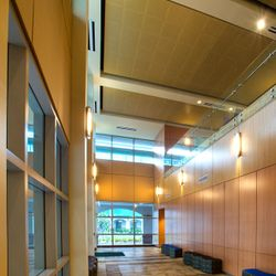 Florida Gulf Coast University – Marieb Hall / College of Health Professions - Main Lobby