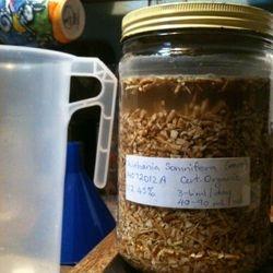 Making Tinctures Herb in Menstrum
