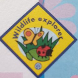 Wildlife Explorer