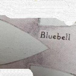 Bluebell Patrol
