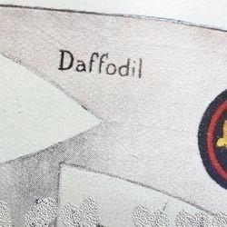 Daffodil Patrol