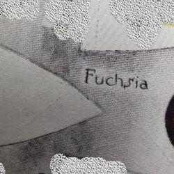Fuchsia Patrol