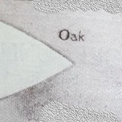 Oak Patrol