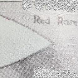 Red Rose Patrol