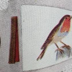 Robin Patrol