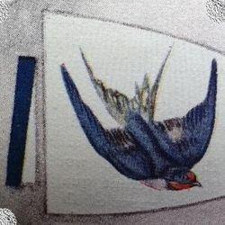 Swallow Patrol