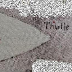 Thistle Patrol