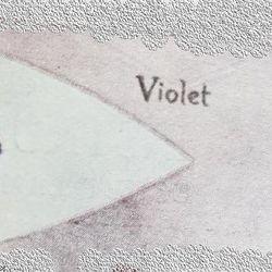 Violet Patrol