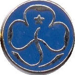 2000s Blue 'enamel' Promise Badge
