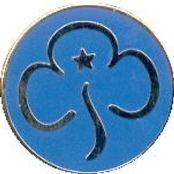 2010s Blue 'enamel' Promise Badge