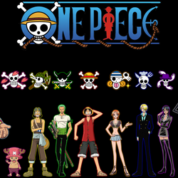 One Piece Members