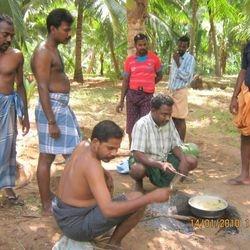 Recent Samayal in Native