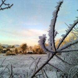 winter in Corlough