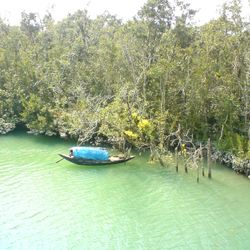 The Sundarbans in its epic beauty