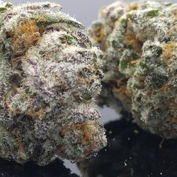 A round-up of some of top-rated strains for recreational use by Lift & Co. users.