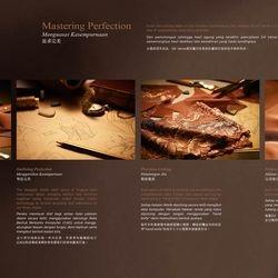 Elken DX Verve brochure