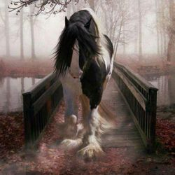 Mystique Horse On Bridge