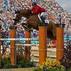 Horses Love Jumping