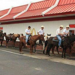 Drive Thru On Horses
