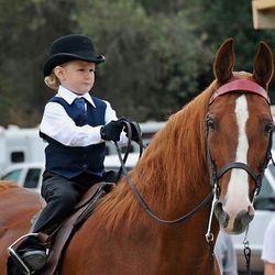 Little Girl Ridding A Horse