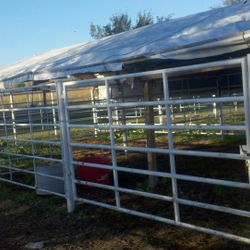 Our covered pens, on the southeast corner