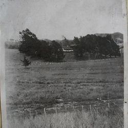Hamiora & Meri Mangakahia's Homestead in Whangapoua