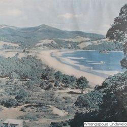 Whangapoua undeveloped 1947