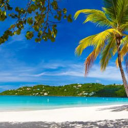Caribbean Beach, Photo Credit: Celebrity Cruises