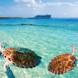 Western Caribbean Cruise, Photo Credit: Cruise Deals