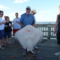 Pete Oct 3, 2010- 150 lb Atlantic brown nose stingray