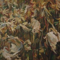 Corn Field 100 x120cm Oil on Canvas SOLD