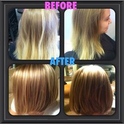 Color and Cut by Shelby Conant