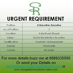 Advertisement no RSHRS250313B