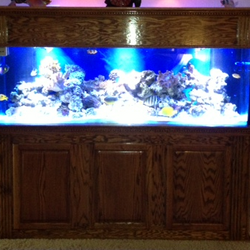 180 Gallon Custom dentel crown. RJ'S Aquarium Stands