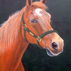 A much loved mare named Star.