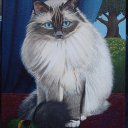 Birman cat named Pennanen.