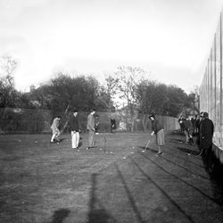 Putting on the green at the Rosebank Playing Fields