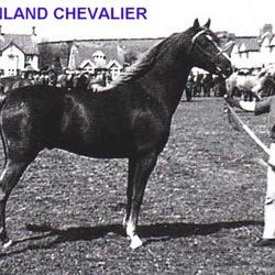 DOWNLAND CHEVALIER