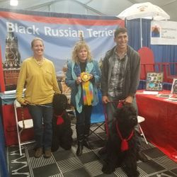 2017 Black Russian Terrier Winner Reserve Best Decorated Booth Award