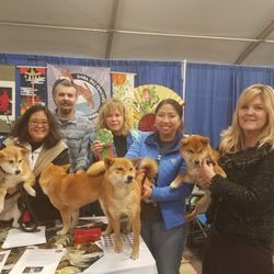 2017 Shiba Inu Winner Best Decorated Booth Award